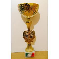 Vittoria di categoria M2 ai campionati italiani di olimpico 2008